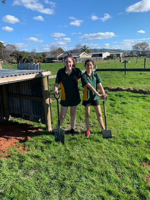 2. Arabella and Erin finished calf pen